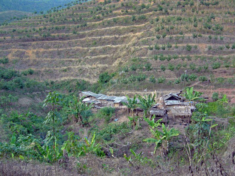 Petite sélection de photos de notre voyage au Xishuangbanna fin décembre 2009.