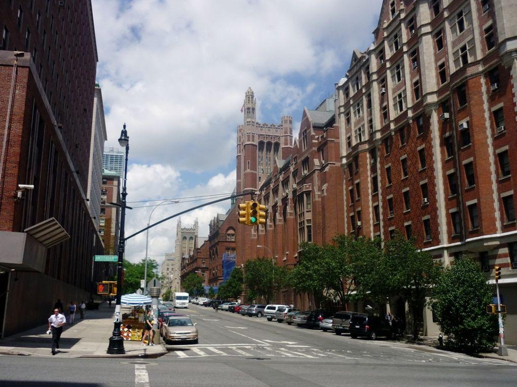 Album - New York (2)