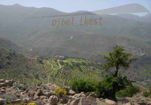 Cet album photos regroupe des images récentes des villes de Tafraout et de Taroudant au Maroc et vous permet de faire une première visite virtuelle en images de ces villes et de leurs lieux d'intérêts touristiques.Blog DarkomGuideMaroc