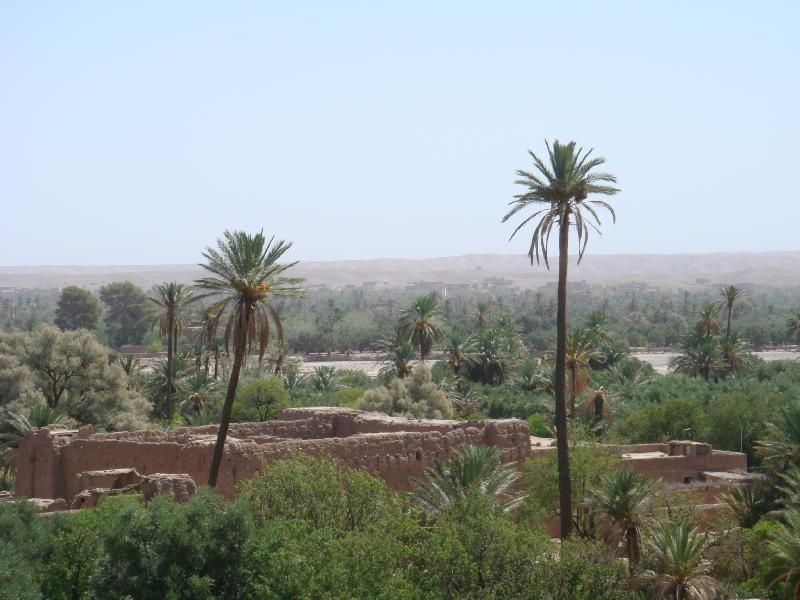 Cet album photos regroupe des images récentes des villes de Zagora,de Skoura et du village de Tamegroute au Maroc et vous permet de faire une première visite virtuelle en images de cette région et ses lieux touristiques.Blog DarkomGuideMaroc