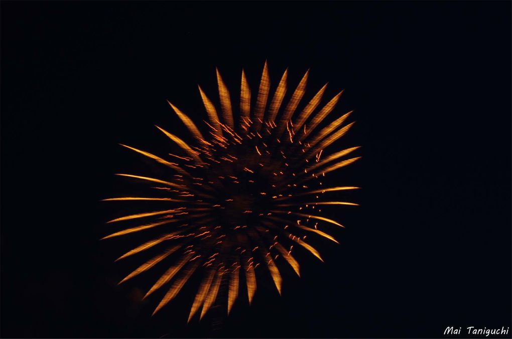 Album - Feu-d'artifice