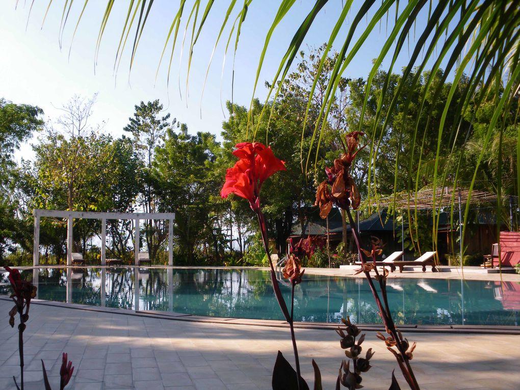 Album - INDONESIE(Bali/Florès/Sumbawa)