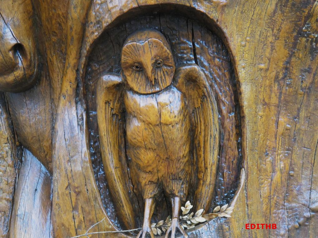 Album - ARBRE-SCULPTE-CAYLAR-34
