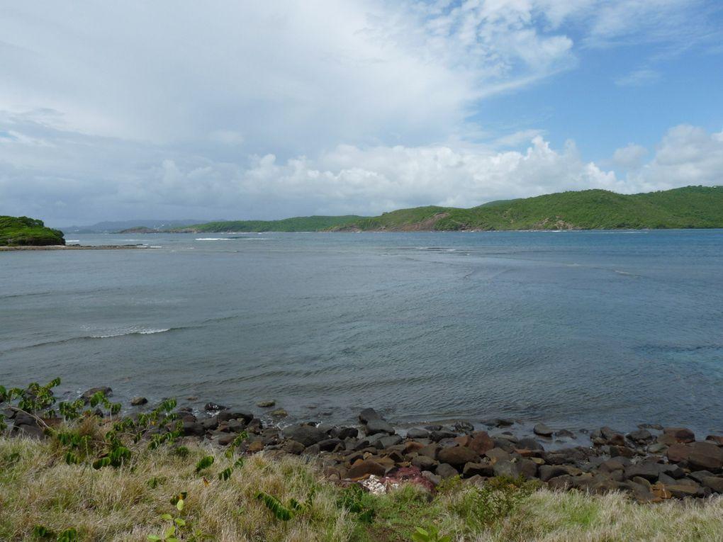 Album - Martinique 2011 - Excursions