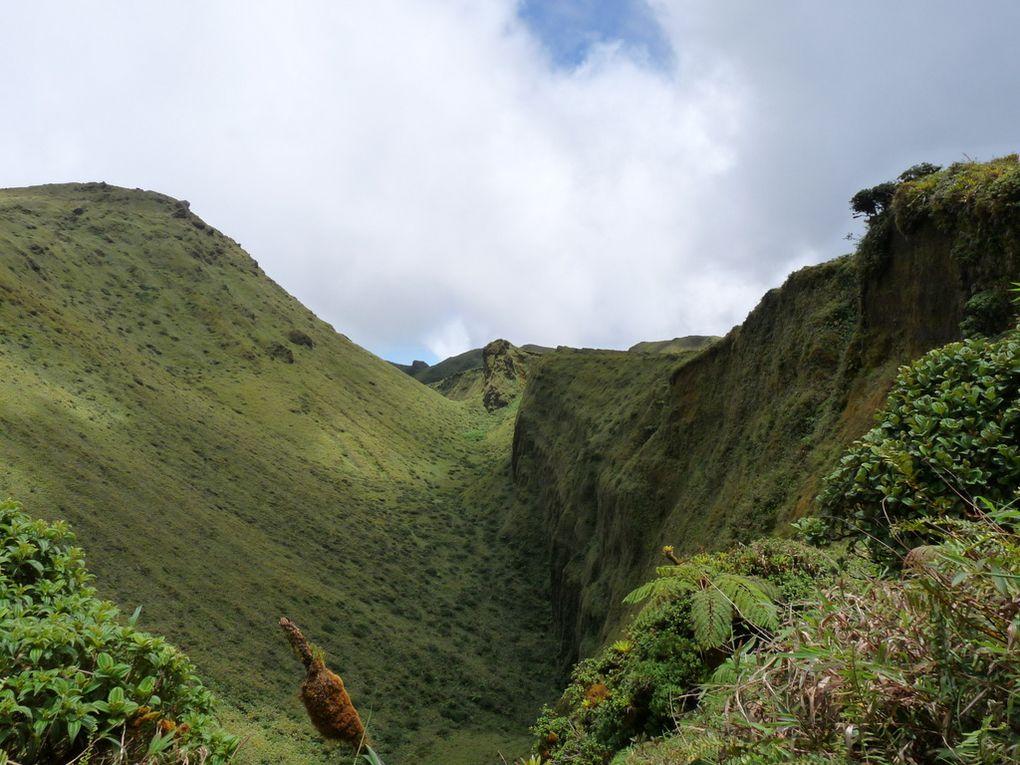 Album - Martinique 2011 - Montagne-Pelee