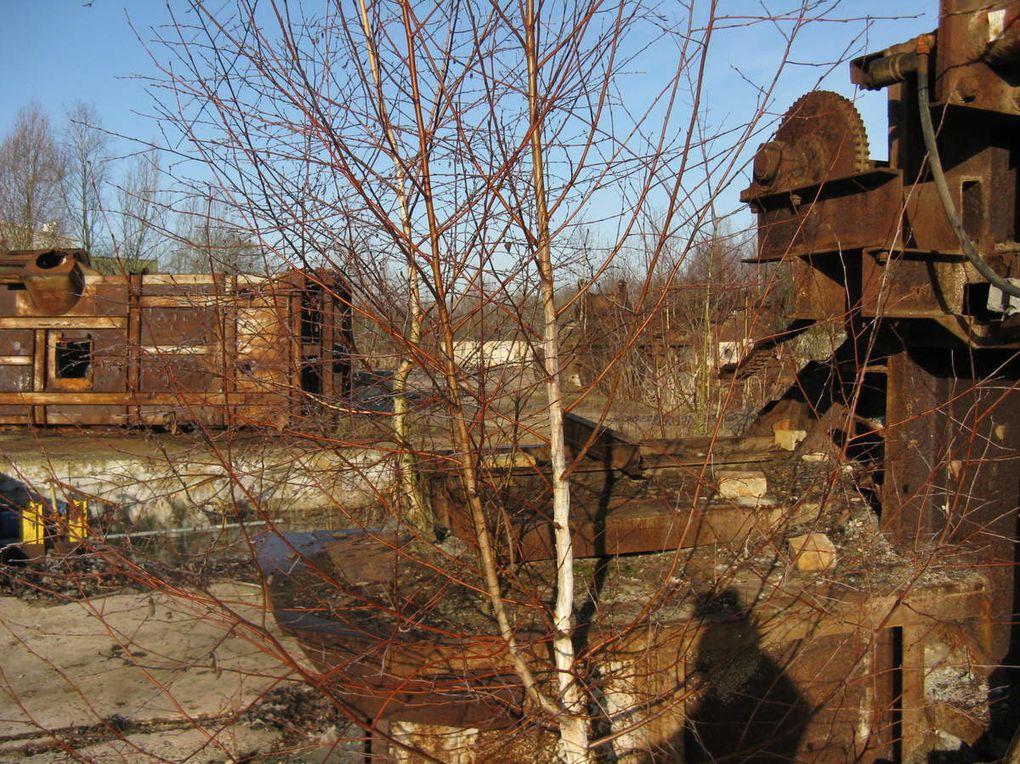 Inlassablement, elle ronge et réduit en miettes les vestiges postindustriels qu'a laissés l'Homme...