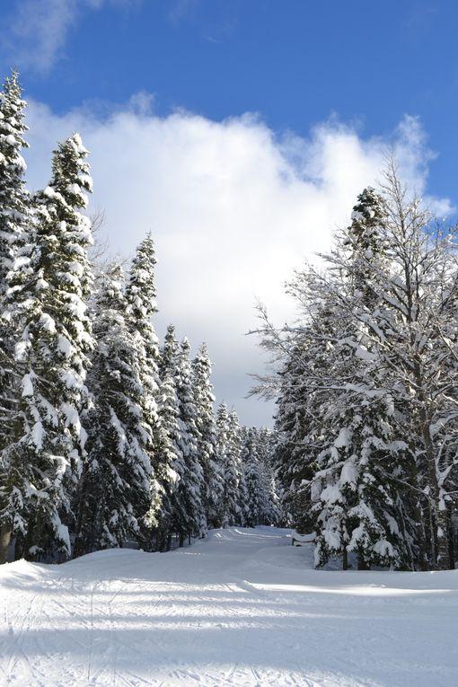 Malaterre en Hiver, au carrefour des pistes de ski de fond et de raquettes