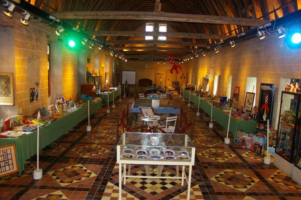 Photos des Journées Tintinophiles de Senlis 2010