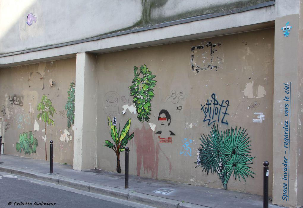 Album - Aux-Murs - 2