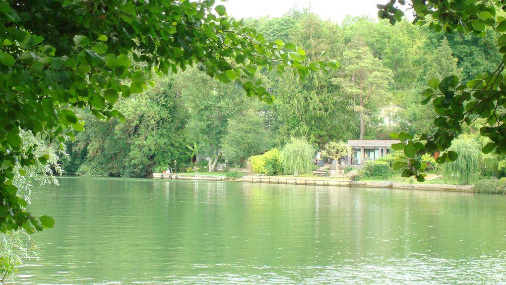 Album - Fontainebleau-2011