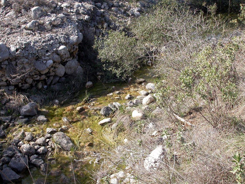 Balade jusqu'au réseau de la source Saint-Martin. Entre paysages de garrigue et scènes aquatiques