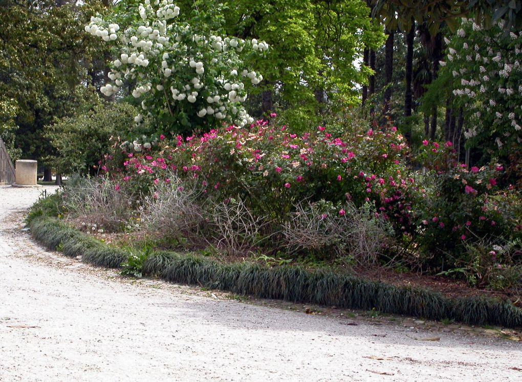 Bordeaux possède de magnifiques jardins. Que ce soit ceux des bords de Garonne, avec le miroir d'eau &#x3B; ou le jardin botanique, en plein centre ville. Voici quelques photos de ces endroits très prisés des Bordelais.