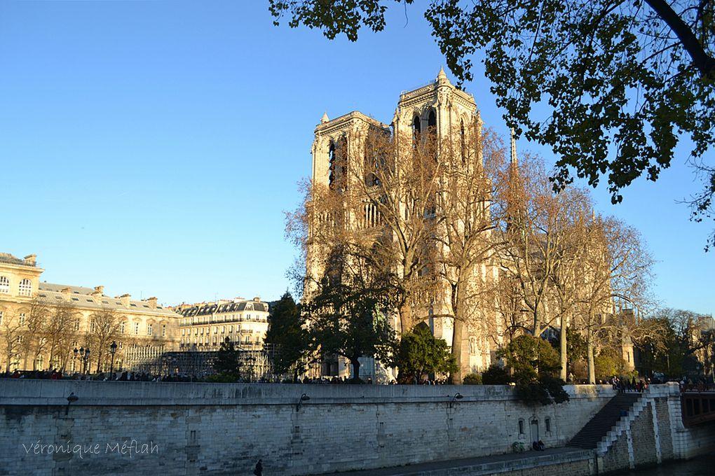 Notre-Dame de Paris et l'Île de la Cité
