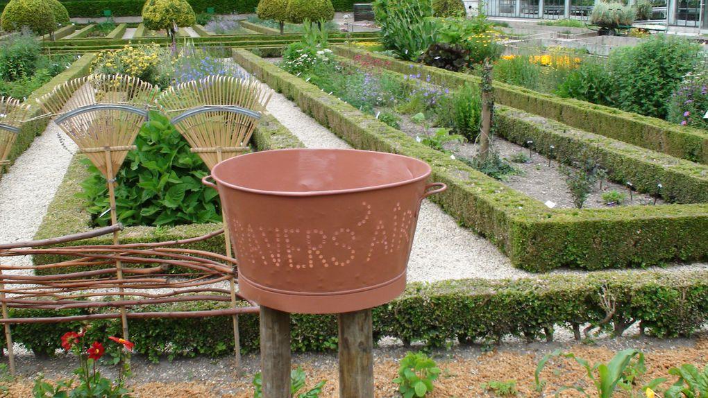 Un avant goût de ce qui a été réalisé par les jardiniers pour la journée Cultures aux Jardins d'Amiens.