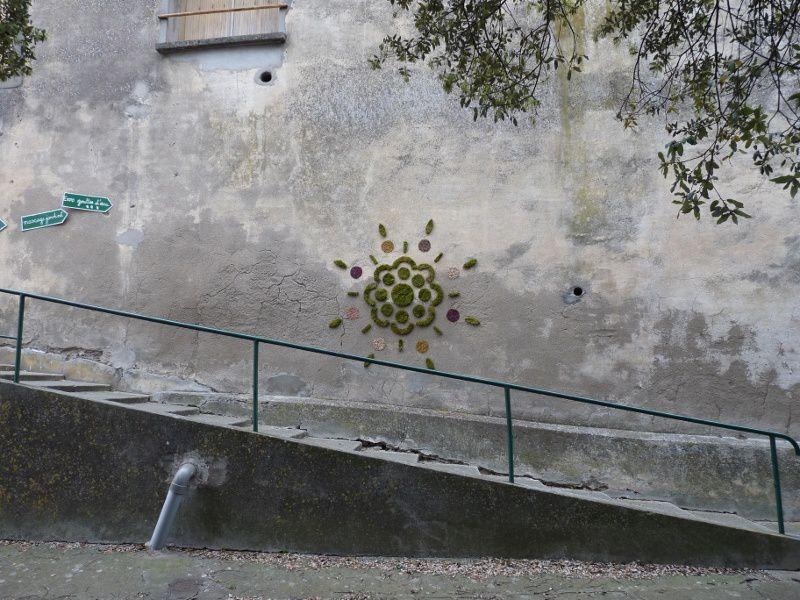 Atelier graff végétal pour le 3 eme festival de la nature et de l'humour 2012 à montlaur dans l'Audeavec Marc Pouyet et Maïté Milliéroux
