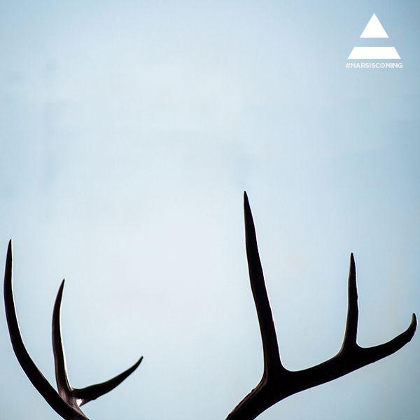 Album - MARS-IS-COMING-2013