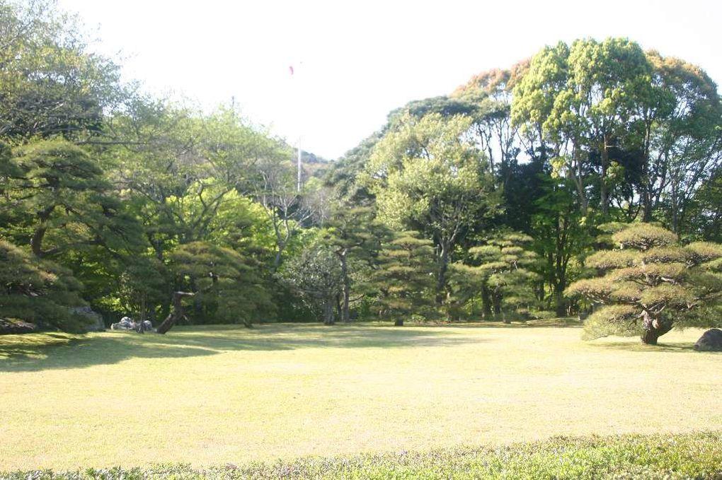 Fin du voyage, Tokyo, Mikimoto