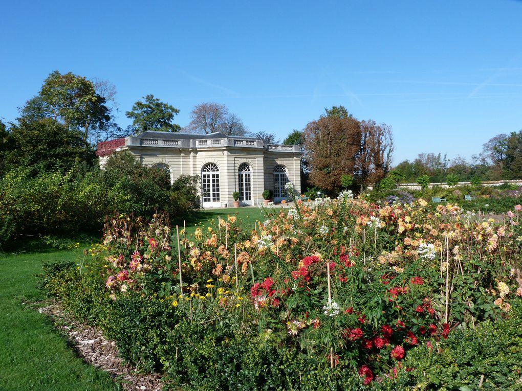 Album - Château-de-Champs sur Marne - jardins