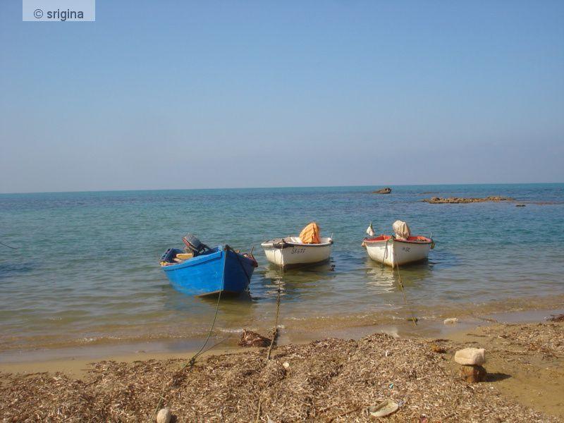 Album - srigina- Oualed Ali dans la Commune d'Hiliopolis