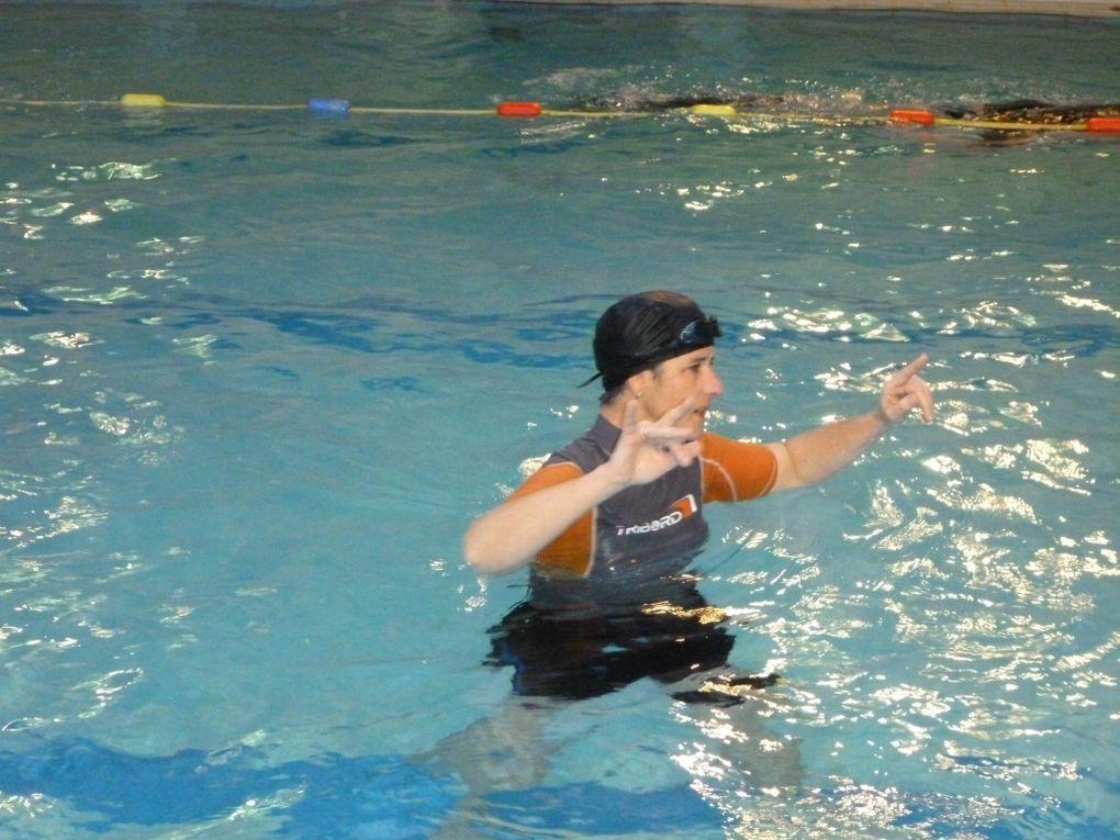 Séance d'entraînement en piscine du dimanche 9 janvier 2011