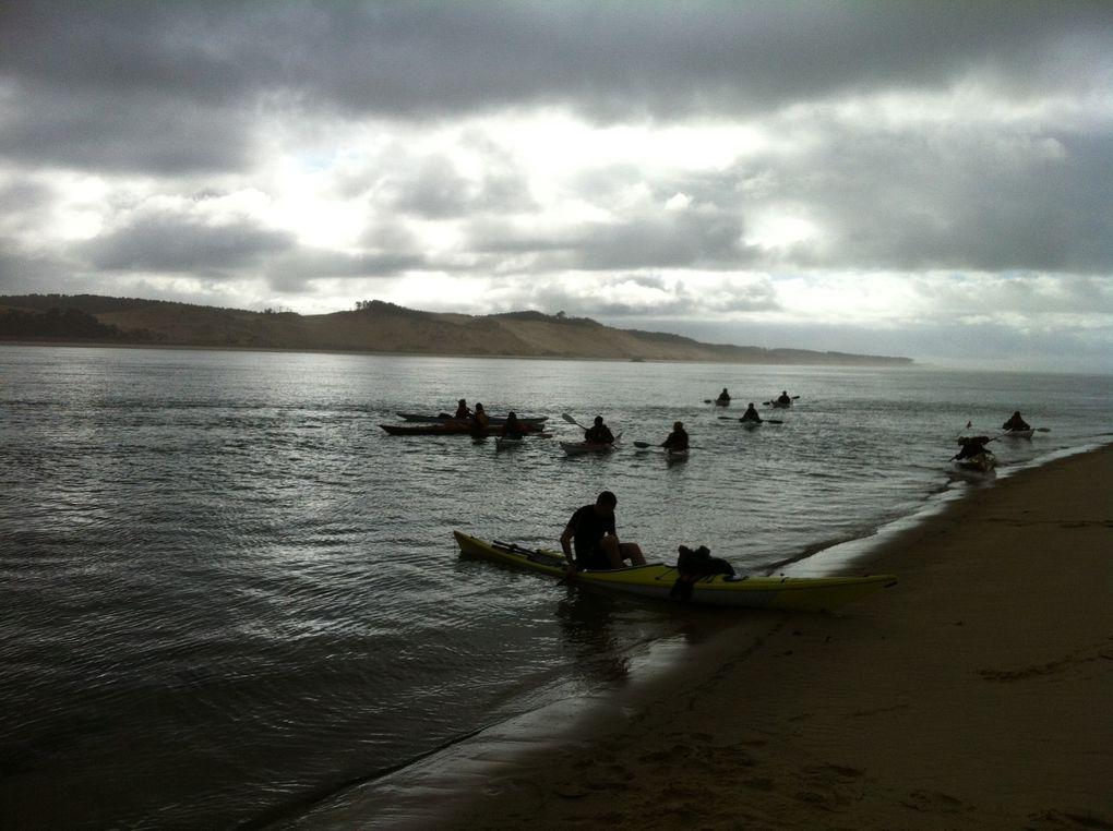 Sortie à Arguin avec les club de kayak de mer d'Arès, Lége Cap Ferret et Arcachon