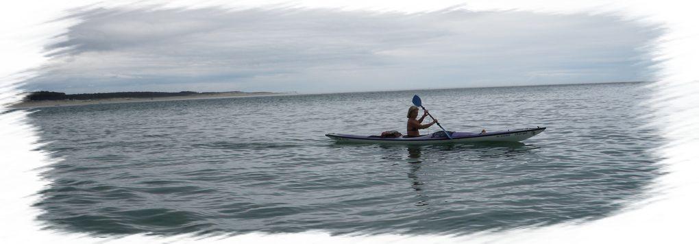 Pique nique au banc d'Arguin14 kayaks 15 kayakistes et 3 Bigouden's