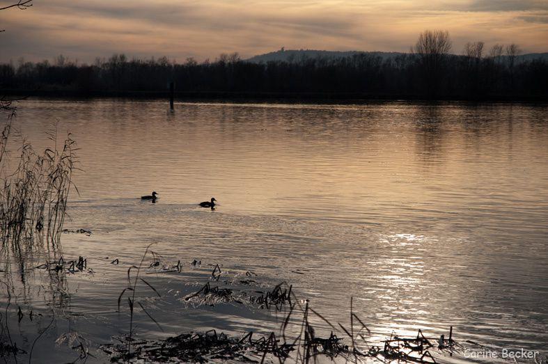 Album - Moselle-12-2009
