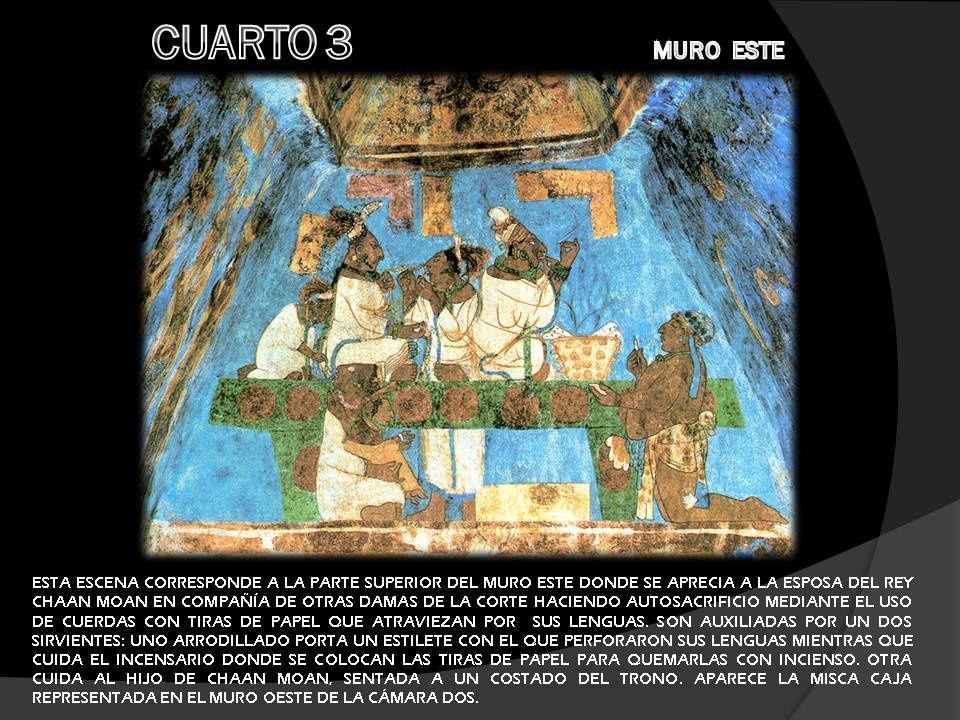 Album - maya