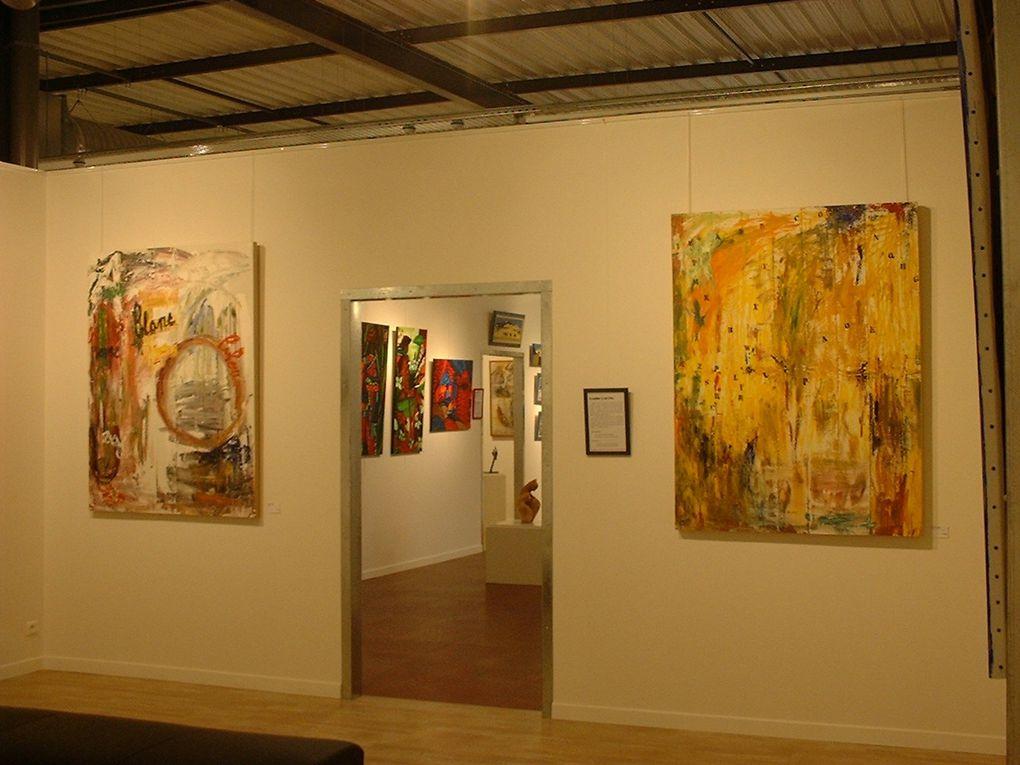 Exposition pendant deux mois dans la Galerie Des arts et des Hommes à Ploeren, près de Vannes.