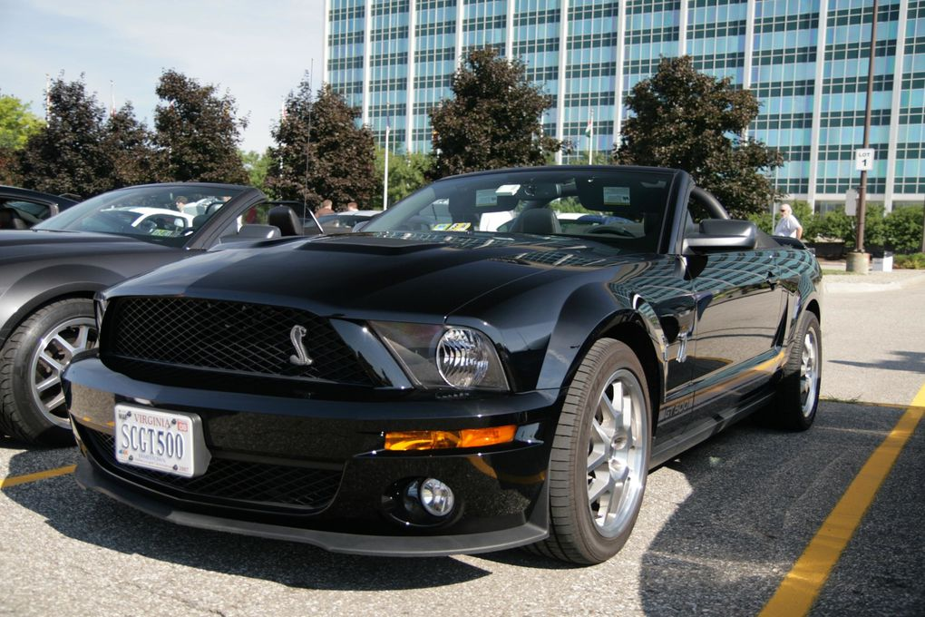 Album - FORD-MUSTANG vol 1