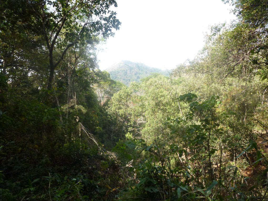 réserve de Péryar 27 février 2012
