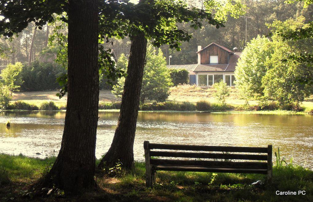 Les bords du Lac de Mimizan-Aureillan