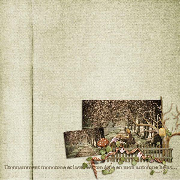 Album - Semaine du 14/12 au 20/12
