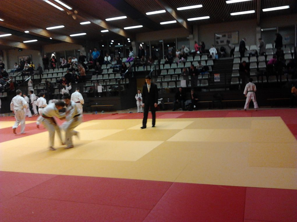 Album - Tournoi-ESCT-15122013