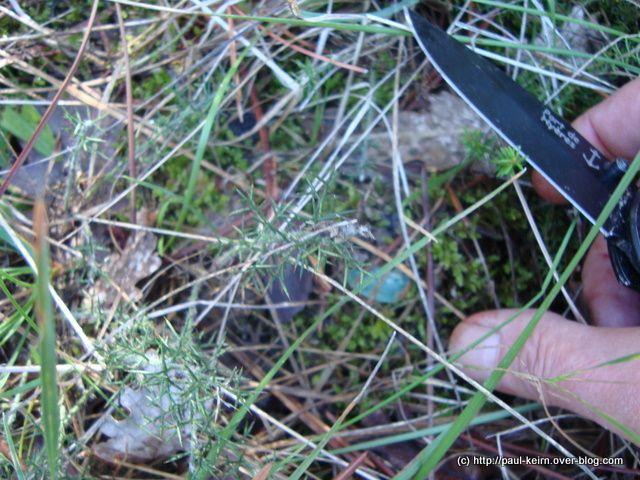 Vous retrouverez sur http://paul-keirn.over-blog.com, le texte accompagnant une sélection de ces photos. Ici, c'est le reportage brut.