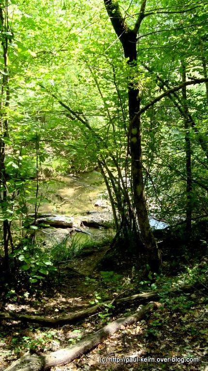En remontant une petite rivière du var, encaissée entre des falaises, au coeur d'une nature encore sauvegardée...