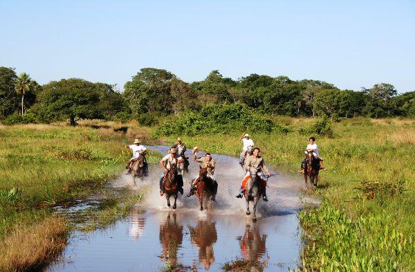 Localisé à 190 km de Campo Grande et 60km d'Aquidauana, la ville connue comme le Portail du Panatanal, le Pousada Aguapé a 15 appartements et une architecture confortable dans une authentifie ferme pantaneira. C'est un endroit paradisiaque, au bord de Rio Aquidauana, avec une grande diversité de faune et une flore exubérante, formée par la végétation typique du Pantanal mixte avec la végétation de savane. Avec des zones de loisir, des kiosques, des balcons, la piscine, le terrain de football, des(chambres  avec télévision, le téléphone, accès à Internet, une piste d'aviation  pour de petits avions et un service personnalisé. La Pousada Aguapé offres : promenades dans les champs, rivières, promenade à cheval, pêche à la piranhas, , safari photographique, nuit focagem d'animaux, traitement de bétail et la coexistence avec la culture et la tradition de l'homme pantaneiro