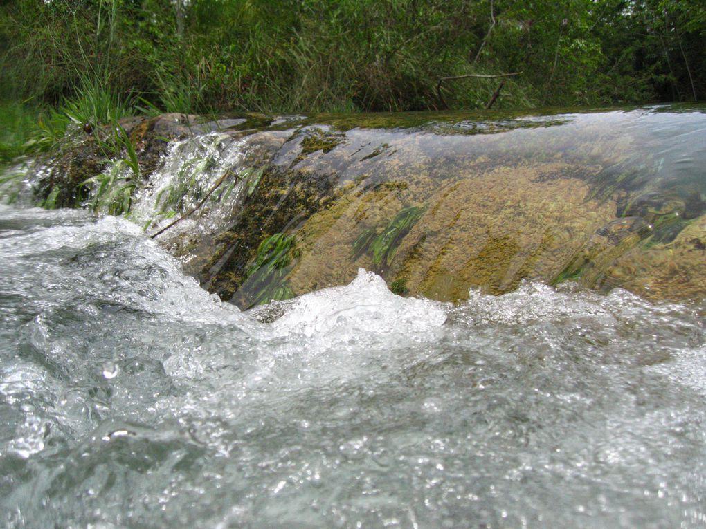 BONITO AVENTURE:  Débute avec une promenade de 1400 mètres sur des sentiers de forêt suivie de plongée libre par le Rio Formoso, traversant le courant de l'eau et des troncs d'arbre submergés, avec une belle faune et flore aquatique. Inclus équipement.  Distance depuis le centre-ville: 06 km  Durée: demi-journée Ce qu'il vous faut apporter : vêtements de bain, serviette, tongs, écran solaire et anti-moustique