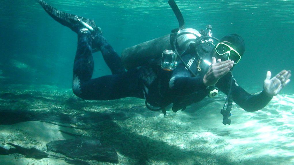 PLONGEE DANS LE RIO DA PRATA   Dans le rio de prata , un plongeon fascinant ou vous pourrez observer une grande majorité de vie marine tel que des : dorades, piraputangas, piaus, corimbas, pacus, cacharas, pintados... la plongée va plaire surtout aux plus expérimentés, par la transparence de l'eau, dans une profondeur approximatif de 8 mètres, et une durée approximative des 60 minutes.  Distance depuis le centre-ville: 50 km Durée: demi-journée Ce qu'il vous faut apporter : vêtements de rechange, maillot de bain, serviette, tongs, écran solaire et anti-moustique