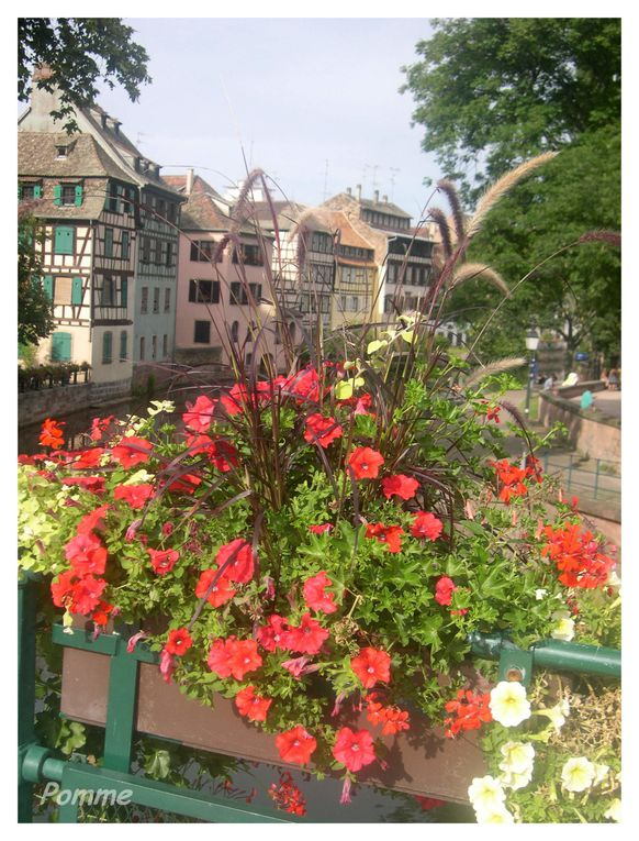 Album - Villes-villages