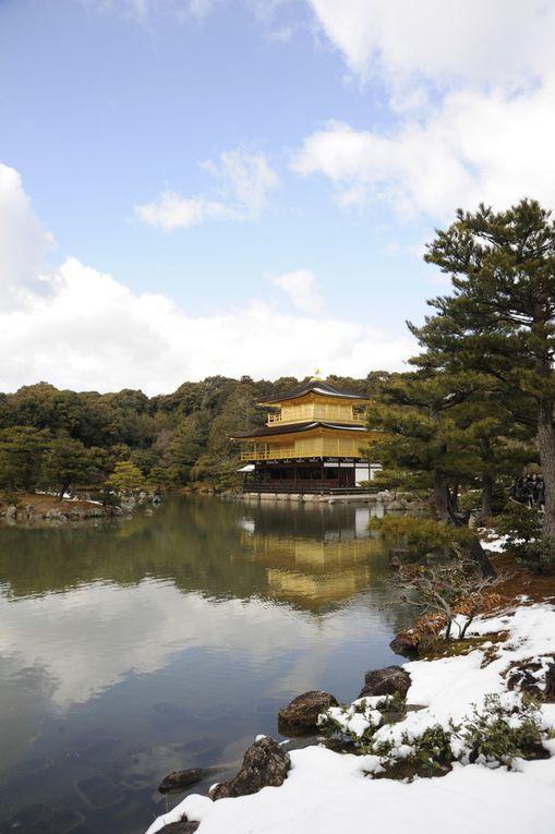 dans l'ordre nara fête des lanterne,kinkakuji sous la neige, arrive de lois au japon,temple et nara avec lois, kobe nouvelle an chinois, musé du manga, ginkakuji et lois, notre resto prefere de ramen, gion, nijo castel, toji temple et son marché,