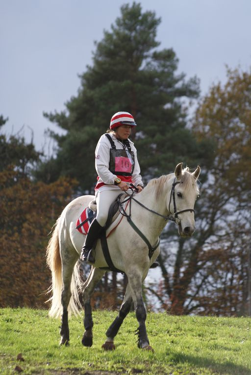 Album - Derby-eventing