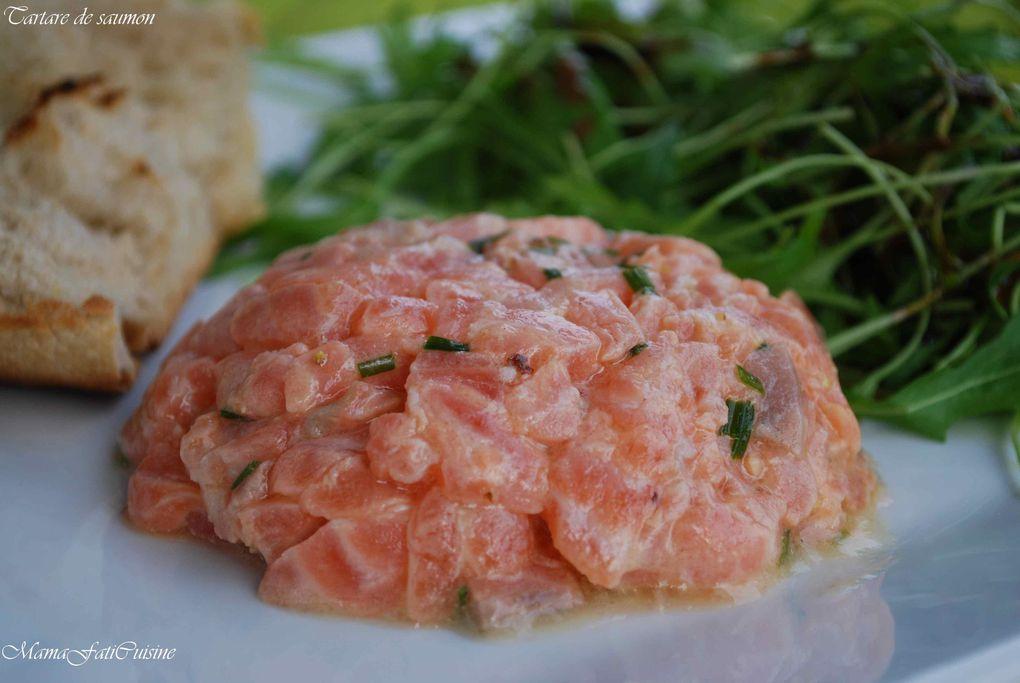 Album - tartare-de-saumon