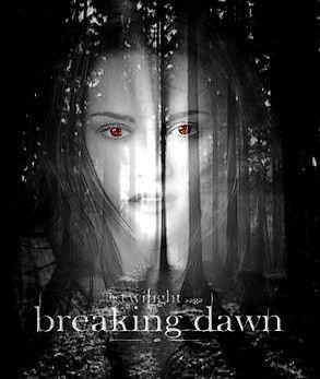 Album - breaking-dawn--lune-de-miel