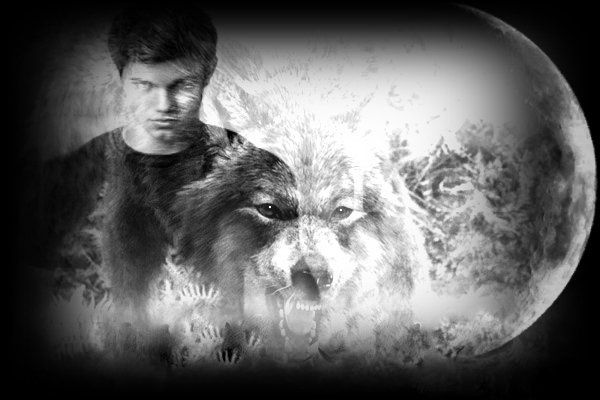 Album - taylor-lautner / jacob black