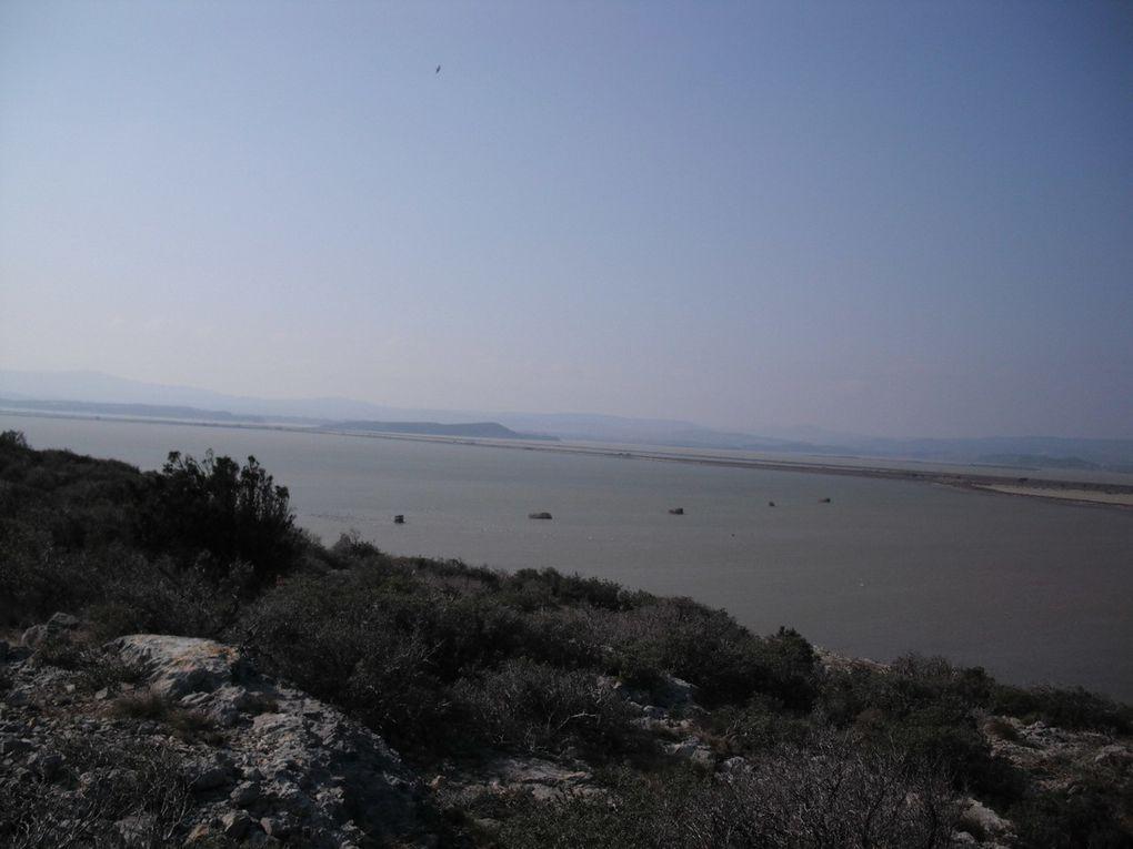 Gruissan Phoebus Trail 2010