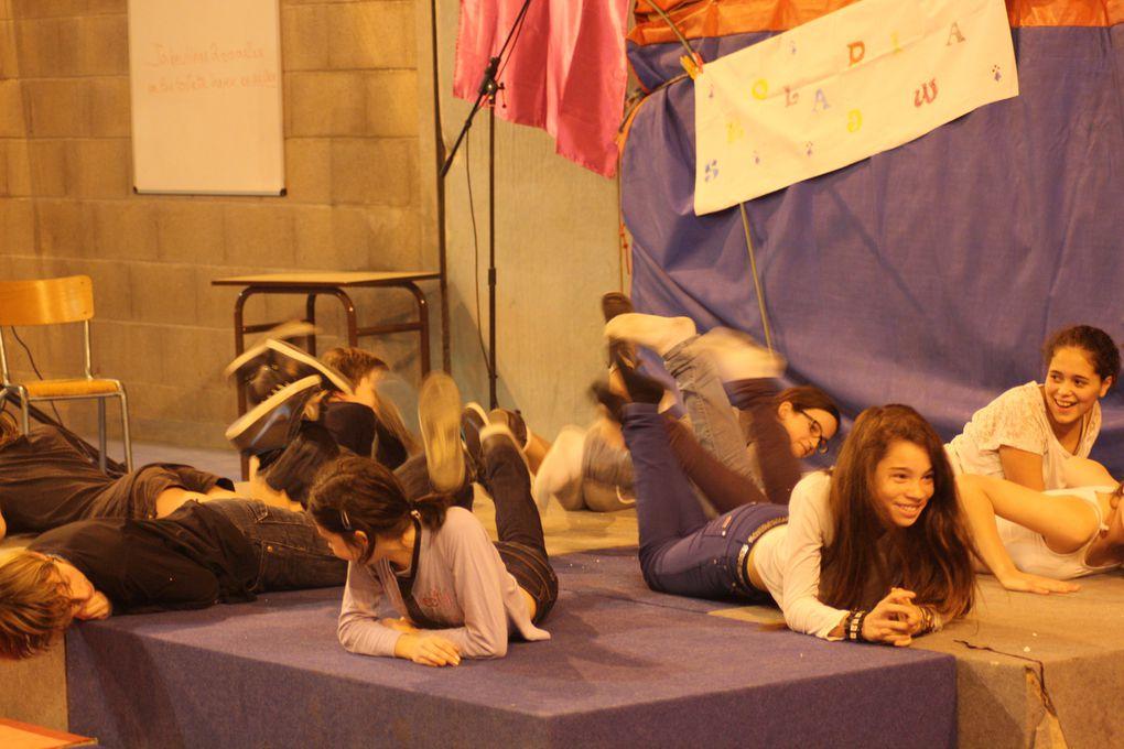 Images du spectacle organisé par le Collège Diwan de Loire-Atlantique (Saint-Herblain) le 17 décembre 2013 pour le Noël de son cinquième anniversaire. La lumière est un peu faible, avec des conséquences sur les photos, mais la qualité et le p