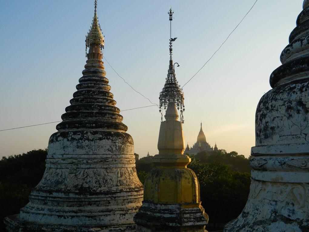 Des bergers avec leur troupeau, des femmes qui cultivent les terres, d'autres qui ramassent les mauvaises herbes, des charrettes tirées par des boeufs qui circulent entre les temples... A Bagan, il y a le tourisme, mais toute une vie aussi à côté