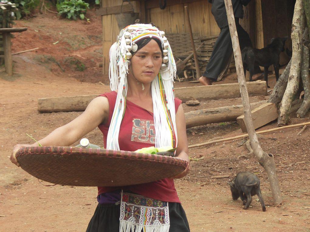 Retour dans les villages des montagnes proches de Kengtung à la rencontre de la population akha, qui conserve bien des traditions d'un autre temps...