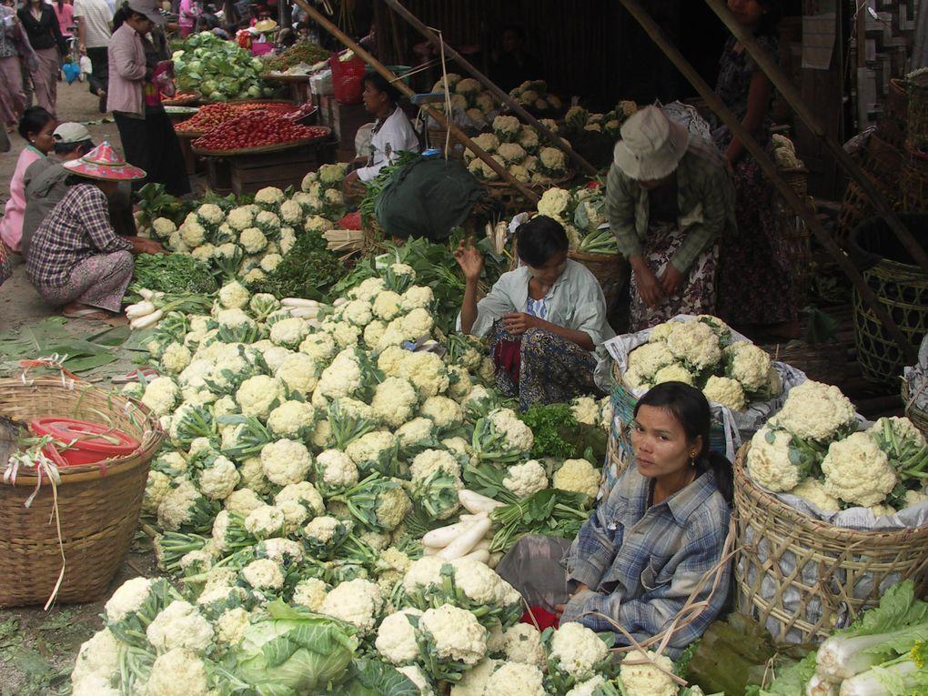 Un tour sur les marchés de Yangon et de Pyay, ville plus au nord sur la route de Magwe et Bagan.